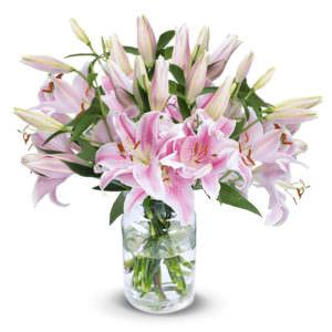 11 Розовых Лилий