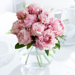 9 Розовых Пионов